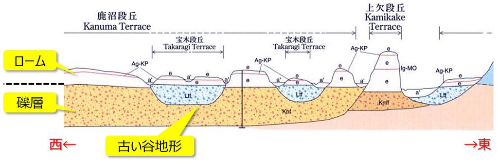 扇状地~段丘堆積物